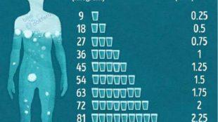 Peki, Benim İçin Ne Kadar Su Gerekli?